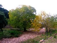 Parque Natural Río Turia