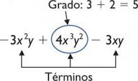 Operaciones con monomios y polinomios