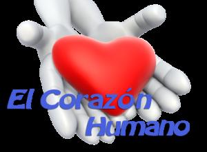corazon_humano