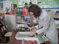 Un laboratorio en clase