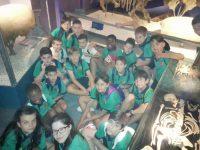 5º de primaria visita el museo de Ciencias Naturales