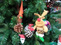 Navidad en marcha: Reza por la Paz